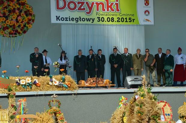 doz12.jpg